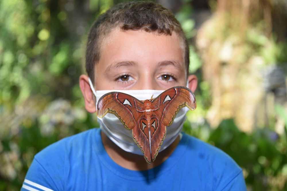 atlas-konya-tropikal-kelebek-bahcesinde-003.jpg